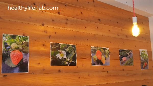 はな豆の内装の写真 壁にいちごの写真が貼ってある